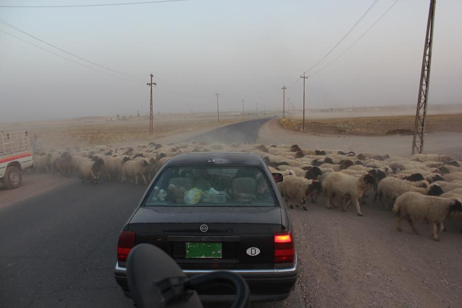 La plaine de Ninive: «Berceau des minorités»