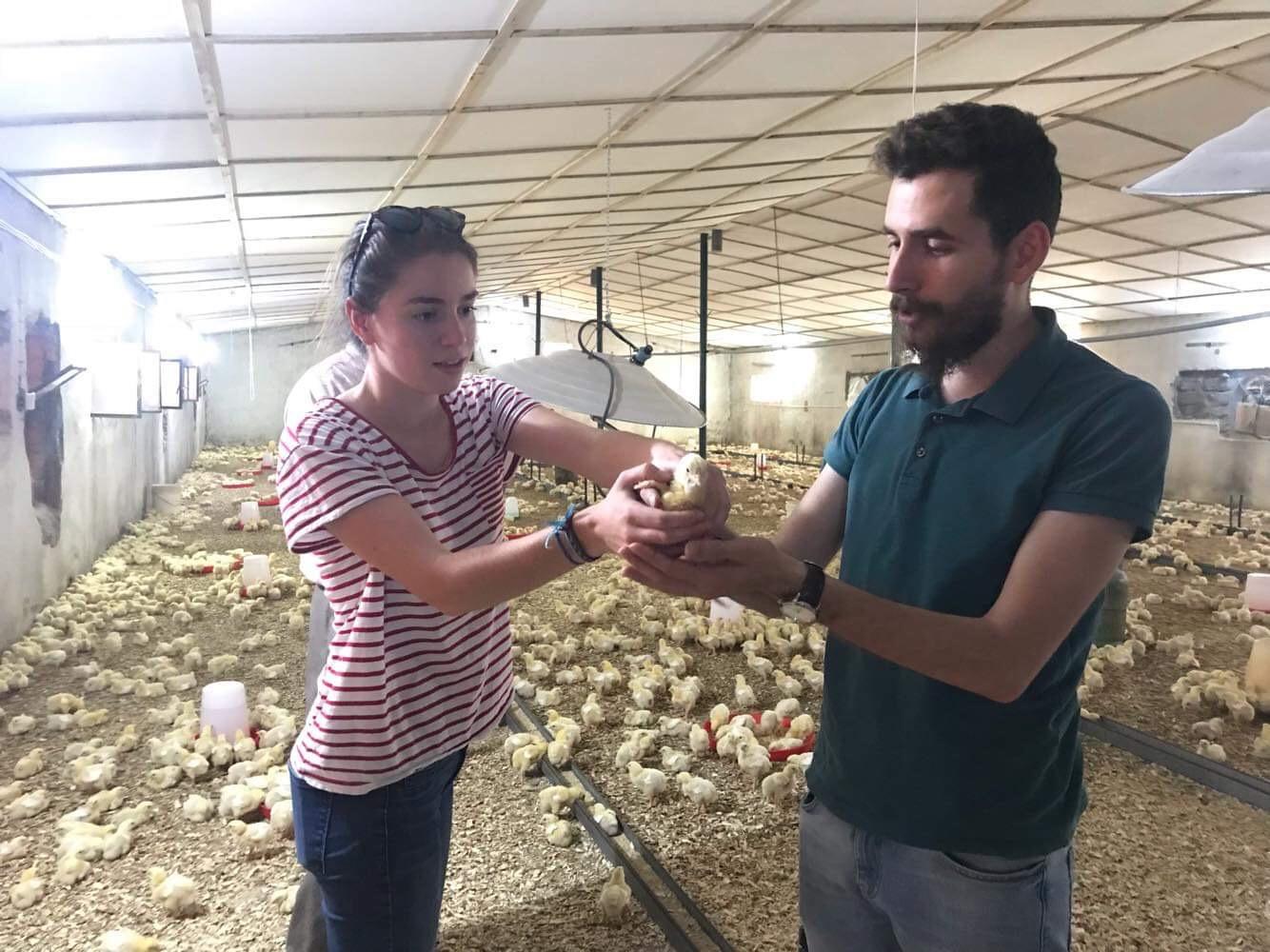 Témoignage de Cécile, volontaire de retour après une mission d'un an en Irak